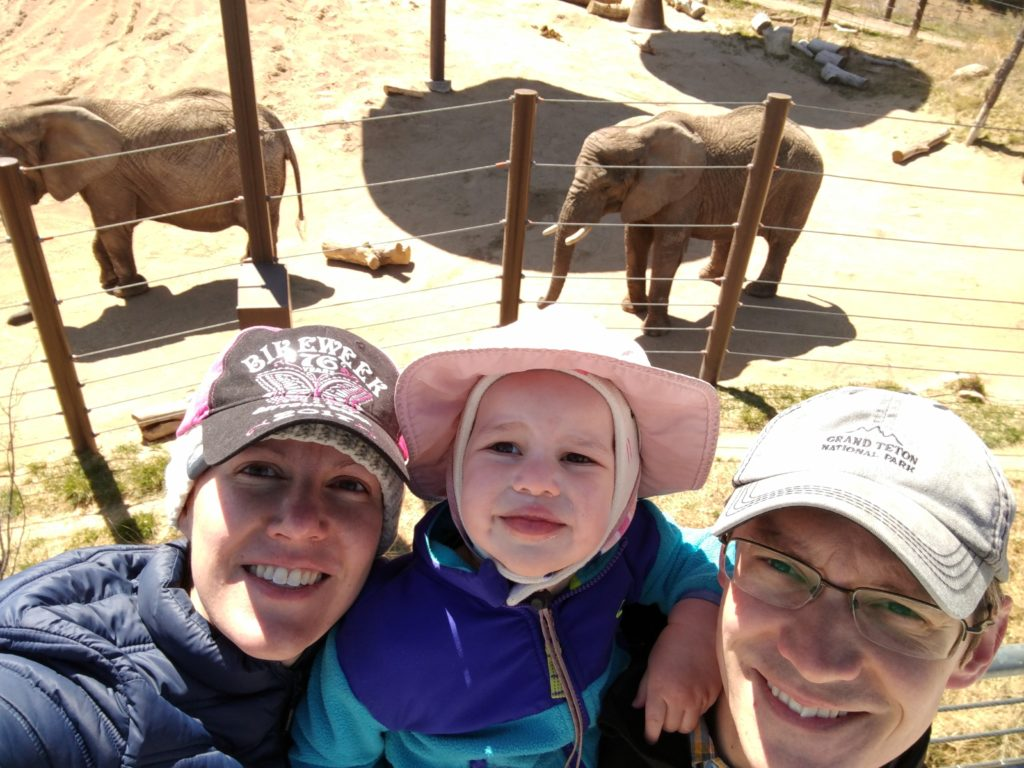 Us and the elephants