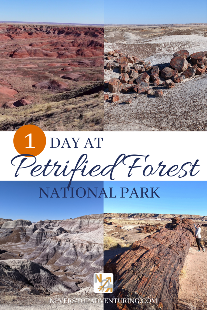 Pinnable image of things to see in one day at Petrified Forest National Park