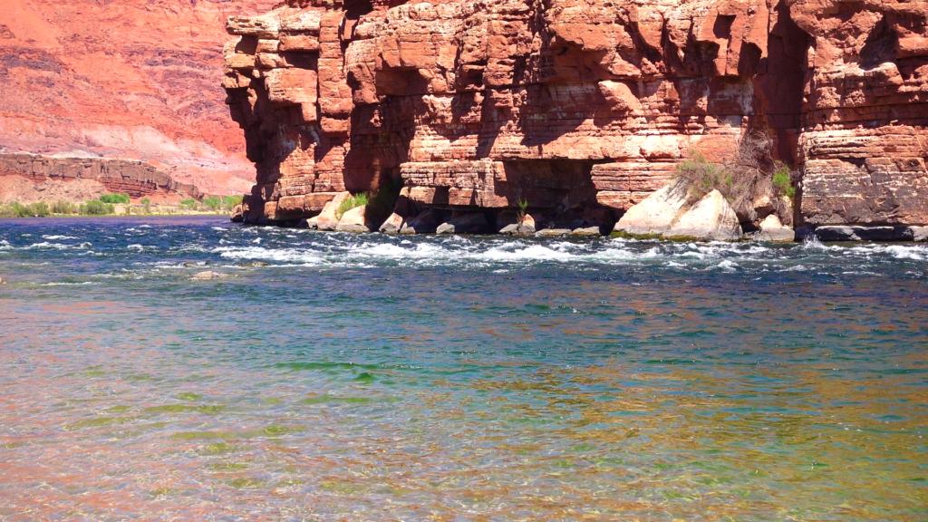 Colorado River from Paria Beach