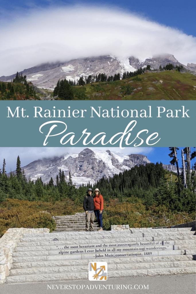 Pinnable image of Mt Rainier Paradise area