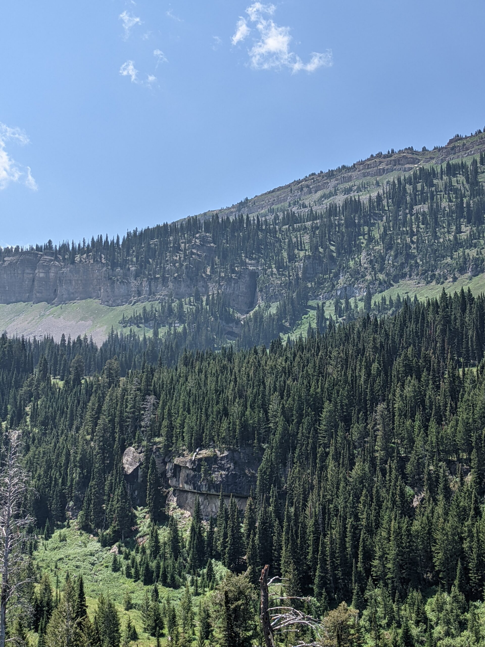 Darby Canyon