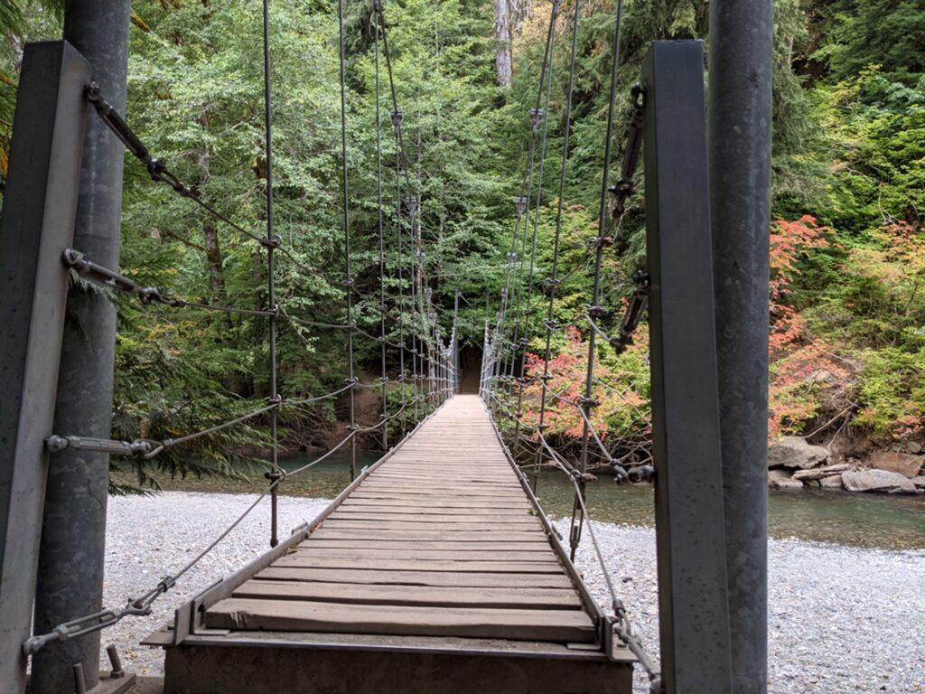 Suspension bridge Grove of the Patriarchs trail